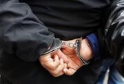 سارقان پسته در دام پلیس کرمان