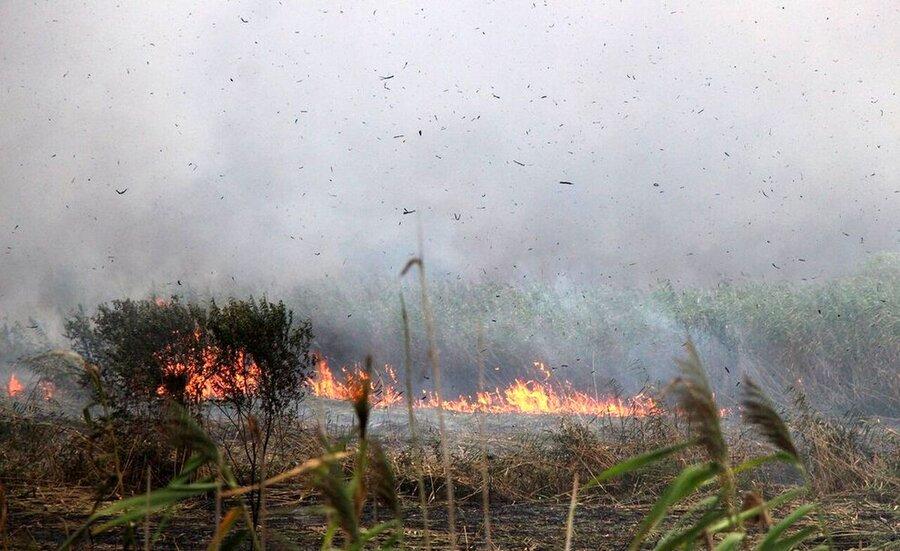 آتش سوزی ـ تالاب انزلی