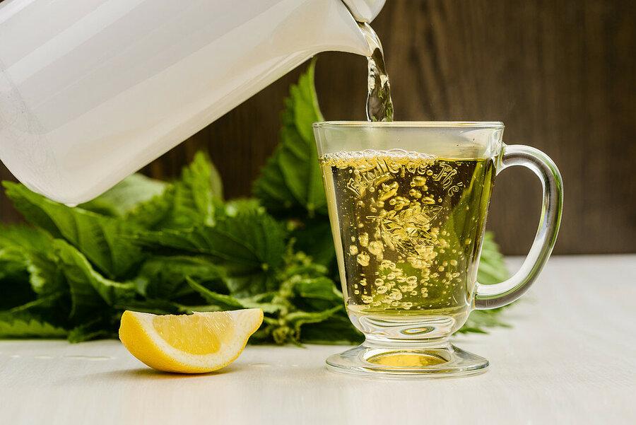 Nettle tea - چای گزنه