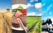 تردیدهای جدی در عواقب طرح تقویت امنیت غذایی