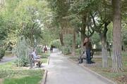 افزایش فضای سبز محله امامت