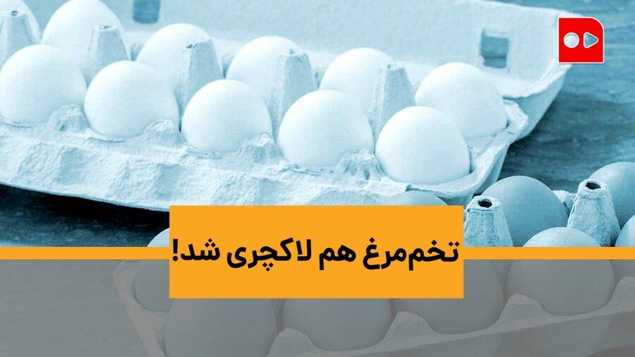 تخممرغ هم لاکچری شد!