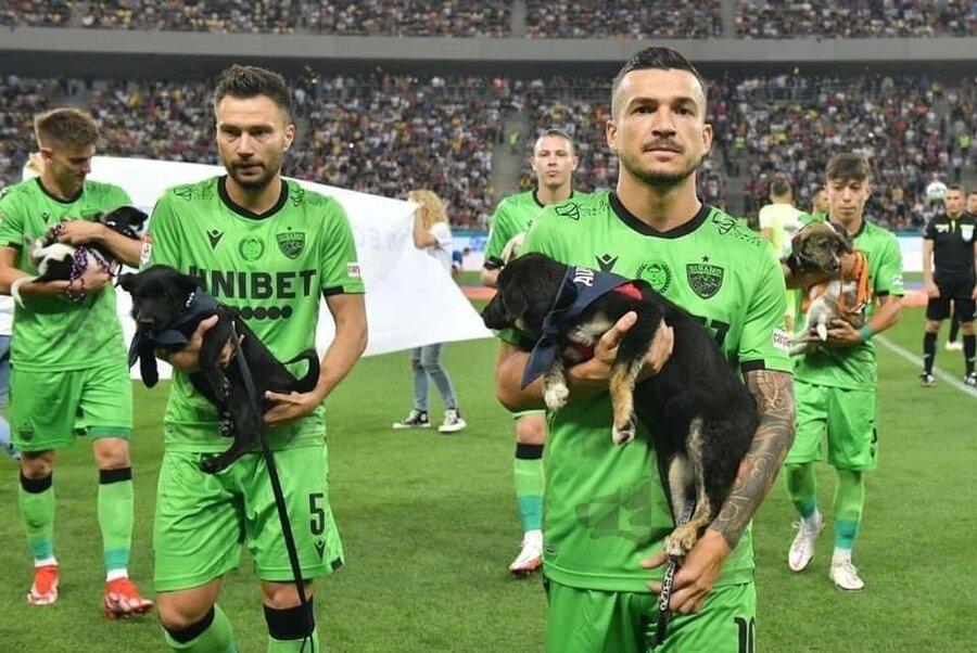 عکس   ورود غیرمنتظره بازیکنان تیم اروپایی با ۱۱ سگ به زمین