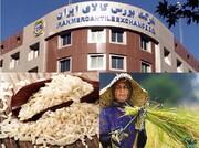 چگونه از بورس کالا برنج بخریم؟ + جزئیات و قیمت