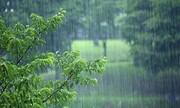 بارش باران در چند استان تا آخر هفته | وزش باد شدید در نوار شرقی | پیشبینی وضعیت جوی تهران