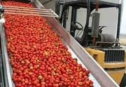 آلایندگی واحدهای تولید کنستانتره در آذربایجان غربی