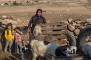 عشایر خراسان جنوبی در محاصره خشکسالی بزرگ