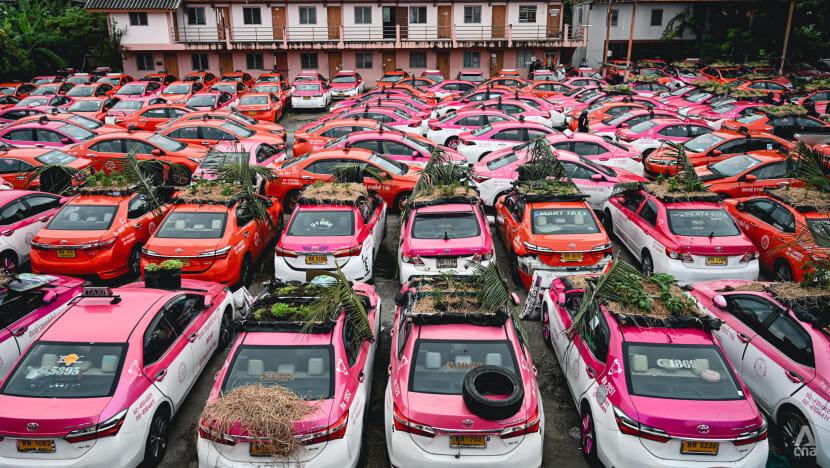 تبدیل پارکینگ تاکسیها به باغچه سبزیجات