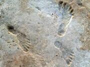 تصاویری از ردپای نوجوانان آخرین عصر یخبندان