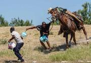 عکس روز| با اسب به دنبال مهاجر
