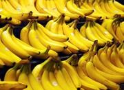 قیمت موز دوباره افزایش یافت   قیمت انواع میوه