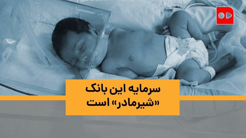 سرمایه این بانک «شیرمادر» است/ گزارش همشهری از بانک شیر مادران برای نوزادان نارس و بیمار