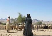 پایبندی عشایر شمال سیستان و بلوچستانبه زندگی دامپروری