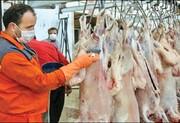 سبقت قیمت گوشت گوساله از گوشت گوسفندی