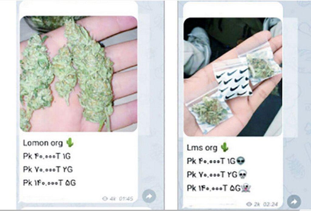 ویدئو | خرید و فروش مواد مخدر در فضای مجازی