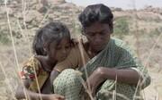 هند با سنگریزهها وارد رقابت اسکار شد