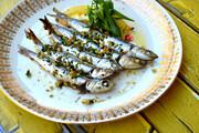 روشهای تهیه یک نوع خوراک ماهی با قیمت مناسب