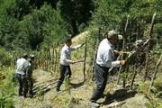 رفع تصرف یک هکتار و نیم عرصه جنگلی در فومن