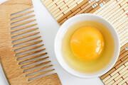 تاثیر زرده و سفیده تخم مرغ بر رشد مو | روش مصرف هر کدام چگونه است؟