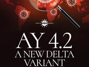 آنچه درباره زیرسویه جدید AY.4.2 کروناویروس میدانیم؟