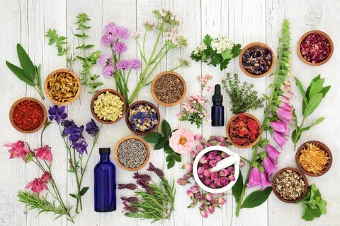 چند گیاه دارویی که باید همیشه در خانه داشته باشیم